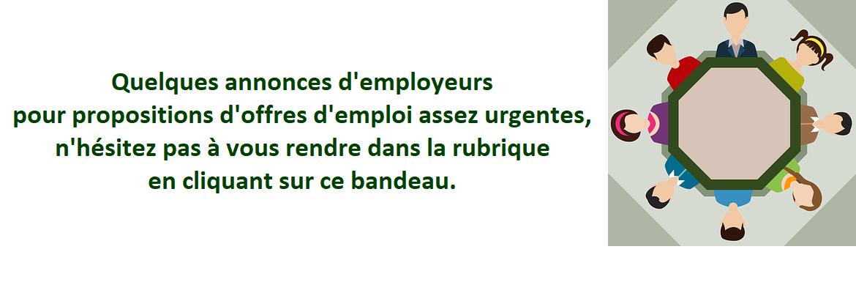 Offres d'emploi sur site